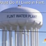 Lead Poisoning and Two Homeopathic Antidotes: What I Would Do if I Lived in Flint, Michigan