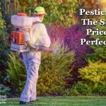 Pesticides: The Steep Price of Perfection