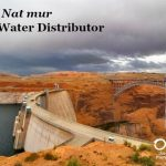 Cell Salt Series: <em>Nat mur</em>, The Water Distributor