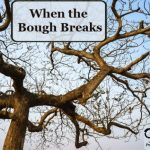 Cell Salt Series: When the Bough Breaks
