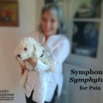 Symphonic Symphytum for Pain
