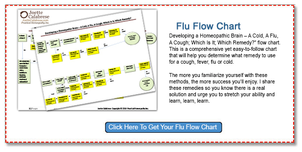 Click Here to Get Your Flu Flow Chart